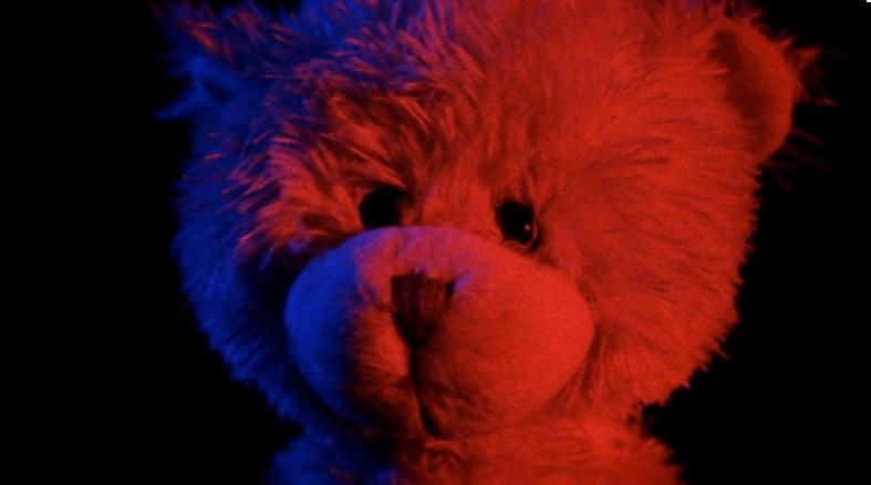 teddy-bomb-photo-2014-film-polygrind