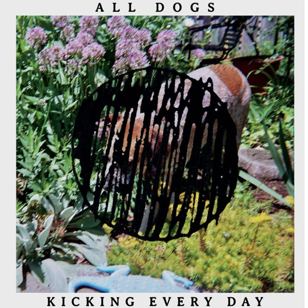 all-dogs-kicking-every-day-2015